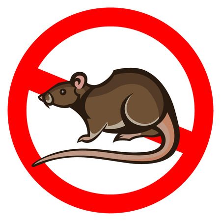 parasite: rat pest vector drawing home parasite - set of household pests in pure style Illustration