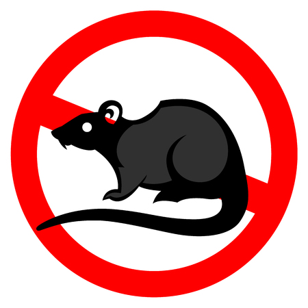 exterminate: rat pest vector drawing home parasite - set of household pests in pure style Illustration