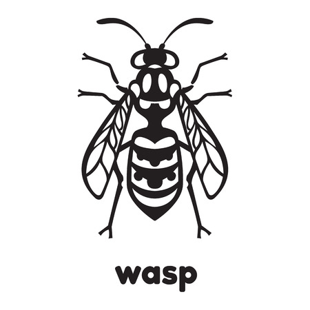 unpleasant: Wasp Bee Hornet vector illustration - set of household pests in pure style Illustration
