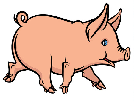 vector illustration of little funny little pig or piglet running