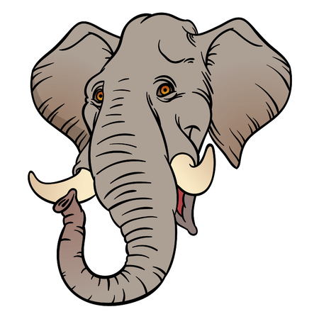 elephant head: Vector hand drawn illustration with cartoon elephant head. Wild Animal. Wild life.