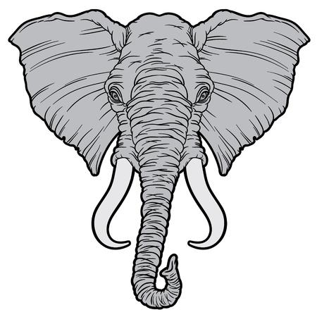 oversized: Illustration on an African elephant - vector