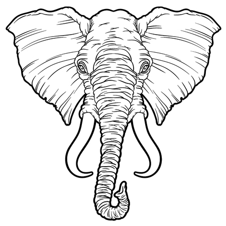 Illustration on an African elephant - vector hand drawing pictures