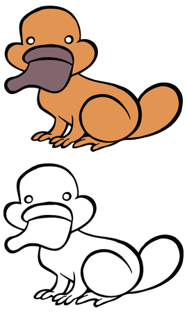 platypus: Color and bw cartoon platypus - You can design cards, part of platypus  , mascot, corporate character and so on. Lively animal character.