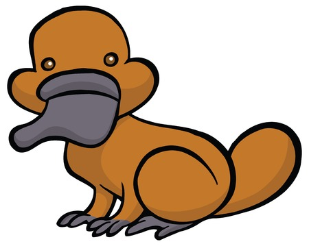 platypus: Funny cartoon platypus - You can design cards, part of platypus   mascot, corporate character and so on. Lively animal character.