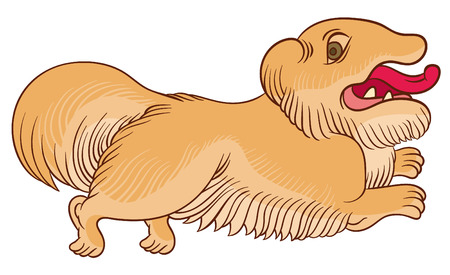 sable: Vector color sketch Sable Pekingese dog - Lion-Dog, Pelchie Dog, or Peke - stylized illustration Chinese