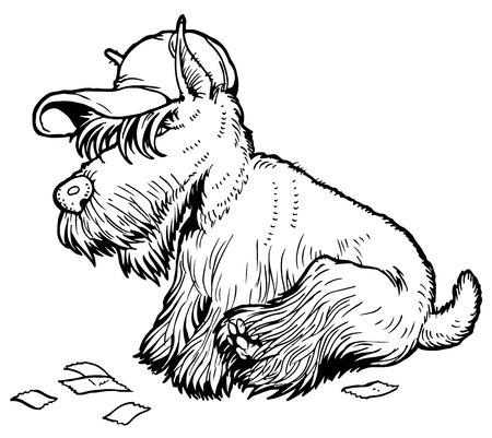 scottish terrier: Vector hipster dog Scottish Terrier breed in hat Illustration