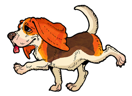 runs: Merry beagle with long ears runs a walk. From a series of images of funny dogs. Illustration