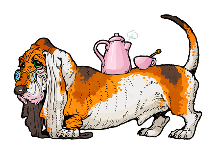 basset hound: Basset Hound with a tea kettle and a cup on the his back. From a series of images of funny dogs.
