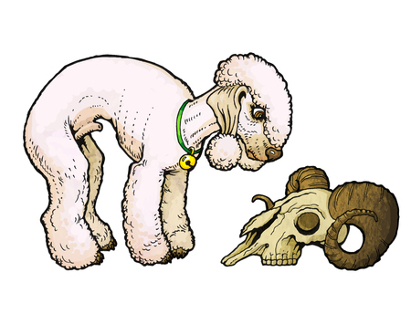 Bedlington Terrier looks at a sheep skull. From a series of images of funny dogs.