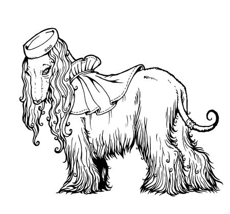 hound: Vector line art drawing Afghan Hound in elegant hat and cape.  From a series of images of funny dogs. Illustration