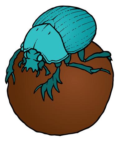 coleoptera: Scarabaeus sacer on ball - Dung Beetle or Gymnopleurus - vector illustration