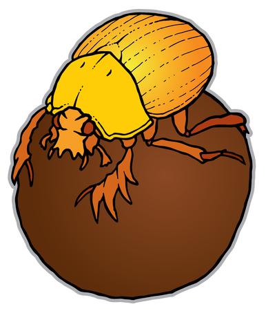Scarabaeus sacer on ball - Dung Beetle or Gymnopleurus - vector illustration