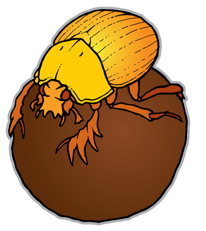 dung: Scarabaeus sacer on ball - Dung Beetle or Gymnopleurus - vector illustration