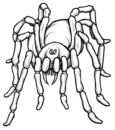 tarantula: Cartoon stylized blue tarantula spider - vector illustration Illustration