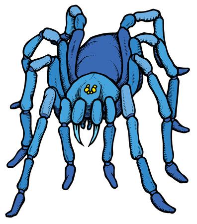 Cartoon stylized blue tarantula spider - vector illustration Illustration