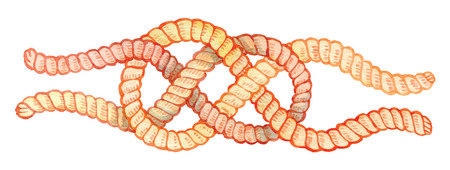 spiral cord: painted watercolor hand-drawing knot - bright rope with knots - vector elements for design