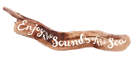 sounds: Vector calligraphic inscription on drifted wood background - ENJOY THE SOUNDS OF SEA poster or greeting card - exclusive hand written vector lettering collection Illustration