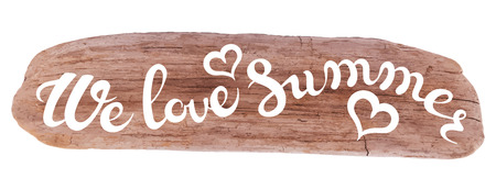 exclusive collection: Vector calligraphic inscription on drifted wood background - WE LOVE SUMMER poster or greeting card - exclusive hand written vector lettering collection