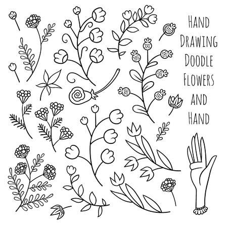Set of summer flowers  - vector hand drawing line art