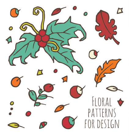 ilex: vector set of branches, leaves and berries for design