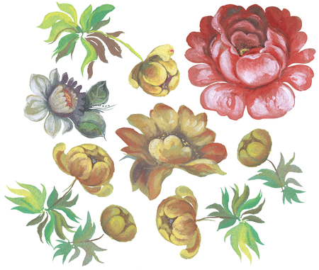 painting style: Hand drawing stylized flowers in Russian style folk handicraft Zhostovo painting Isolated on white background