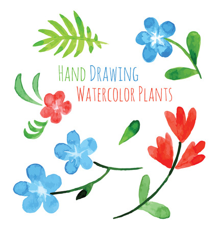 Set of flowers  hand drawing painted in watercolor on white paper. Sketch of flowers and herbs. Wreath, garland of flowers Illustration
