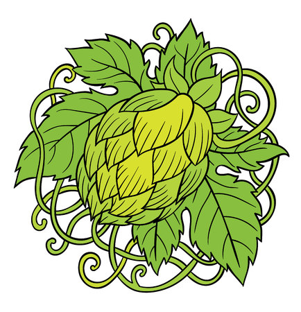ale: Hops vector visual graphic icons, design or logos, ideal for beer, stout, ale, lager, bitter labels and packaging