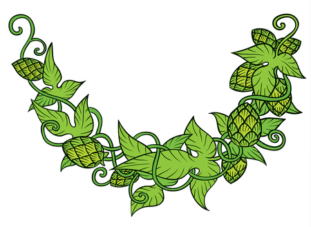 Hops vector visual graphic vignette - design or logos, ideal for beer, stout, ale, lager, bitter labels and packaging