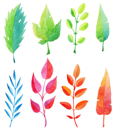 autumn garden: set of multicolored watercolor leaves vector