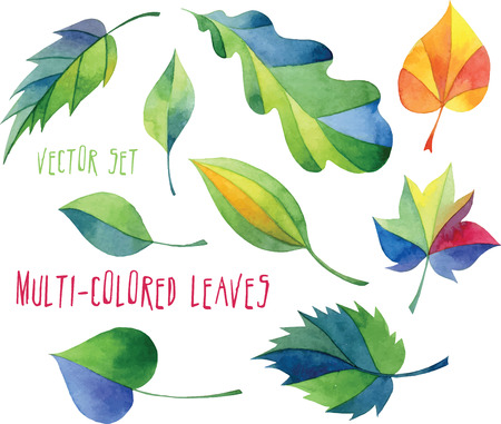 green plants: Set of multicolored leaves of different trees - vector design elements Illustration