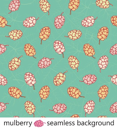 mulberry leaves and berries seamless colorful background vector Illustration