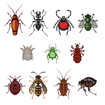 parasites: different cartoon or symbolic picture animals - set of household pests in pure vector style