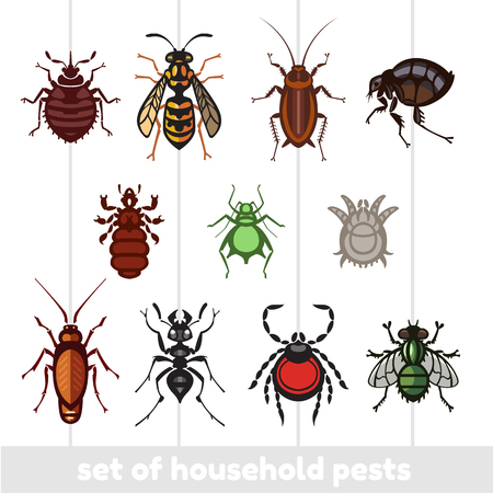 different cartoon or symbolic picture animals - set of household pests in pure vector style Vector Illustration
