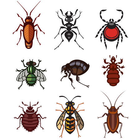 disgusting animal: different cartoon or symbolic picture animals - set of household pests in pure vector style