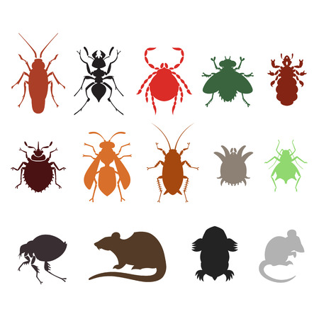 infestation: different cartoon or symbolic picture animals - set of household pests in pure vector style