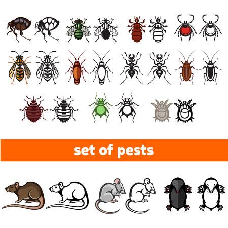 verschiedene Cartoon oder symbolisches Bild Tiere - Satz von Haushaltsschädlinge in reinen vektorart