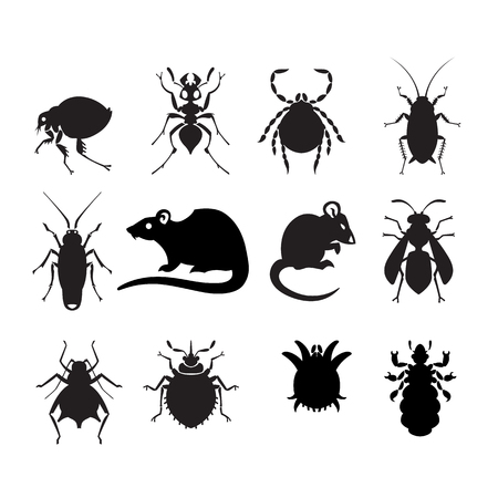 disease control: different cartoon or symbolic picture animals - set of household pests in pure vector style
