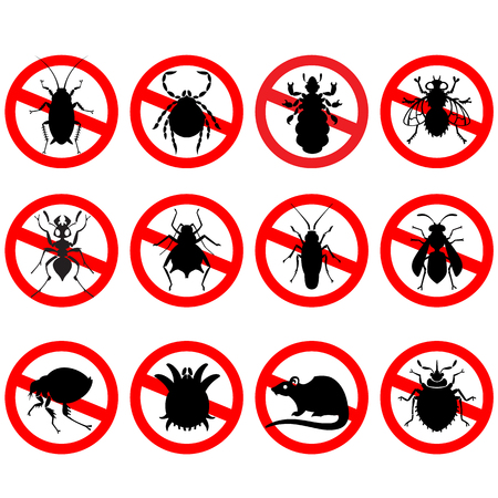 a disease carrier: different cartoon or symbolic picture animals - set of household pests in pure vector style