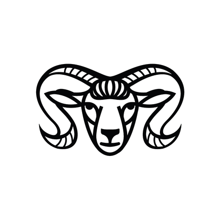 white coat: Linear stylized drawing - head of sheep or ram - for icon or sign template