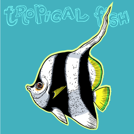 inhabitants: Bright tropical sea fish - vector hand drawing isolated linear illustration in sketch style Illustration