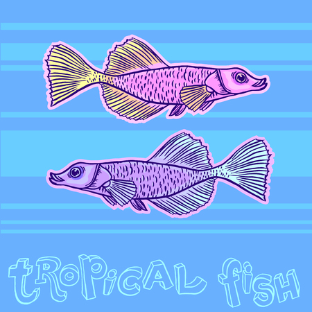Bright tropical sea fish - vector hand drawing isolated linear illustration in sketch style Illustration