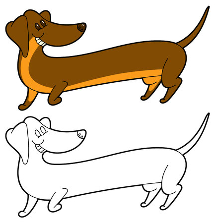 Cute cartoon long dachshund - vector illustation