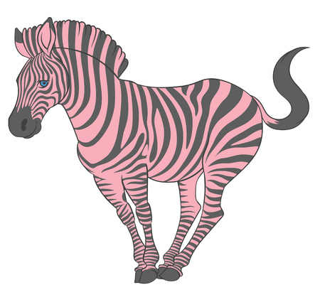 cute naturalistic zebra with pink stripes in funny pose  - line drawing hand-drawing sketch Illustration