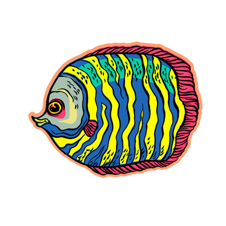 Bright tropical sea fish vector hand drawing linear illustration in sketch style