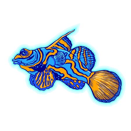 明るい熱帯海魚 - ベクトル手図面分離線形図スケッチ スタイルで  イラスト・ベクター素材