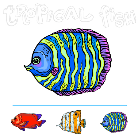 Bright tropical sea fish, vector hand drawing isolated linear illustration in sketch style.