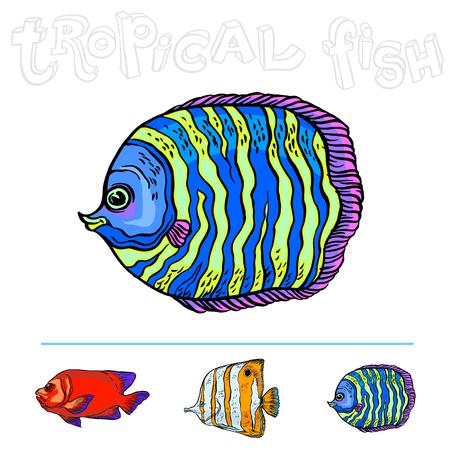 Heldere tropische zeevis, vectorhandtekening geïsoleerde lineaire illustratie in schetsstijl.