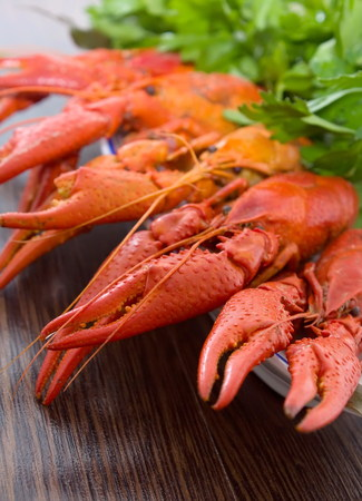 chitin: Craw-fish on a plate with a salad.