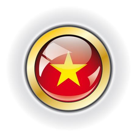 Vietnam shiny button flag  photo